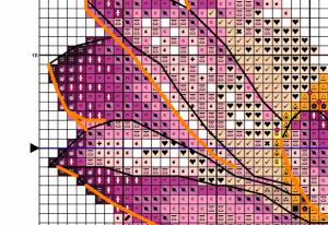 Ružový lotos - ukážka farebnej predlohy