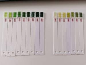 Výber farieb